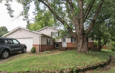Loveland Single Family Home For Sale: 801 Glendon Drive
