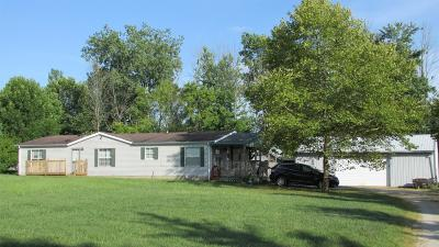 Adams County, Brown County, Clinton County, Highland County Single Family Home For Sale: 463 Gumley Road