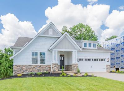 Deerfield Twp. Single Family Home For Sale: 5756 Victoria Road