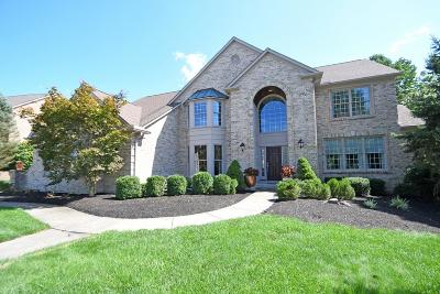 Clermont County Single Family Home For Sale: 793 Cedar Drive