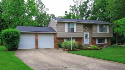 Deerfield Twp. Single Family Home For Sale: 3890 Wood Trail Drive