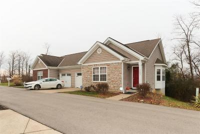 Clermont County Multi Family Home For Sale: 3990 Mt Moriah Drive