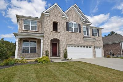 Hamilton Twp OH Single Family Home For Sale: $490,000