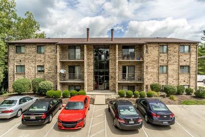 Hamilton County Condo/Townhouse For Sale: 7246 Creekview Drive #8