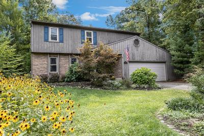 Clermont County Single Family Home For Sale: 4256 Pinetree Lane
