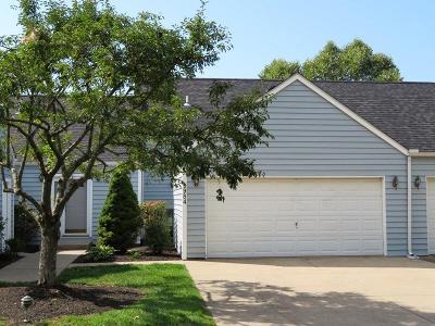 Highland County Condo/Townhouse For Sale: 9984 Shamrock Lane