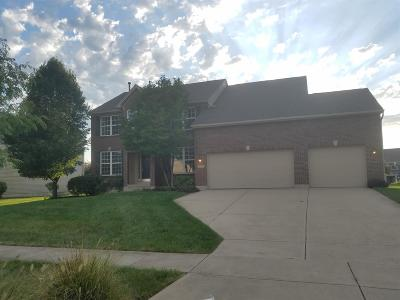 Warren County Single Family Home For Sale: 3747 Pinnacle Lane