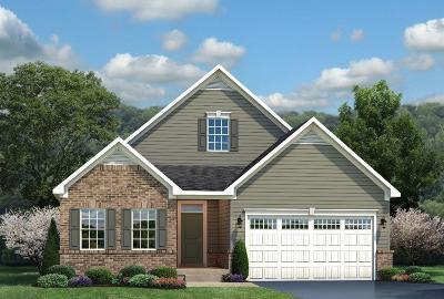 Single Family Home For Sale: 5976 Caitlyn Rose Lane