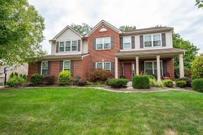 Single Family Home For Sale: 6523 Tree View Drive