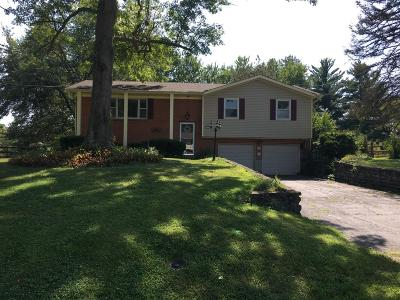 Crosby Twp, Harrison Twp, Miami Twp, Whitewater Twp, Morgan Twp, Ross Twp Single Family Home For Sale: 319 Miami Valley Drive