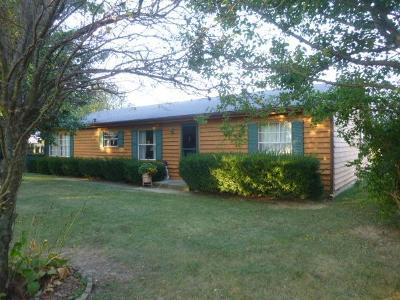 Clinton County Single Family Home For Sale: 1595 Roshon Road