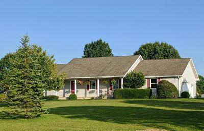 Clinton County Single Family Home For Sale: 613 Brown Road
