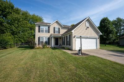 Clermont County Single Family Home For Sale: 4208 Roundhouse Drive