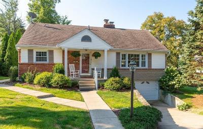 Hamilton County Single Family Home For Sale: 9035 Shadetree Drive
