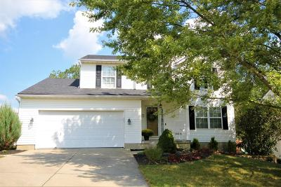 Warren County Single Family Home For Sale: 193 Wood Forge Circle
