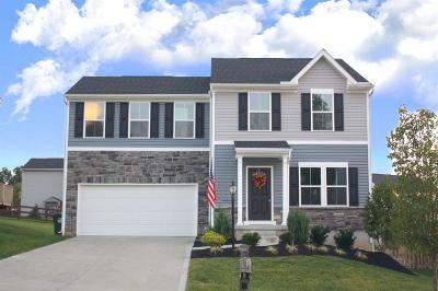 Warren County Single Family Home For Sale: 4663 Thomas David Drive