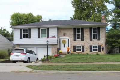 Hamilton County Single Family Home For Sale: 325 S Elm Street