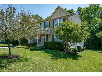 Beavercreek Single Family Home For Sale: 378 Wayside Drive