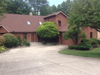 Centerville Single Family Home For Sale: 5011 Lausanne Drive
