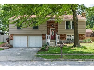 Englewood Single Family Home Active/Pending: 824 Southview Drive