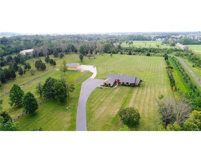 Miamisburg Single Family Home For Sale: 4298 Medlar Road