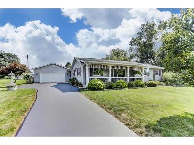 Troy Single Family Home For Sale: 3810 Burton Road