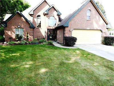 Troy Single Family Home For Sale: 2330 Cara Drive