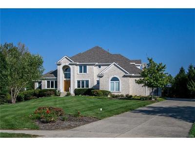 Dayton Single Family Home For Sale: 10565 Falls Creek Lane