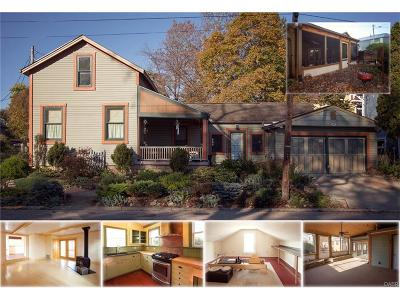 Yellow Springs Single Family Home For Sale: 108 Walnut Street