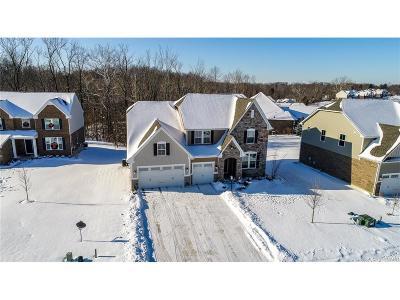 Dayton Single Family Home Active/Pending: 8706 Dowd Court