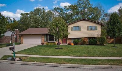 Dayton Single Family Home Active/Pending: 7572 Roselake Drive