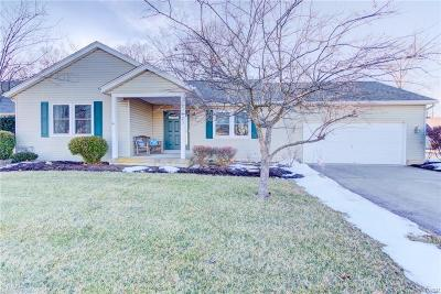 Miamisburg Single Family Home Active/Pending: 10029 Village Tree Court