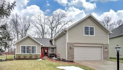 Centerville Single Family Home For Sale: 6454 Hollowview Trail