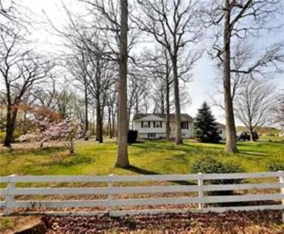 Springfield Single Family Home For Sale: 3175 Pitchin Road