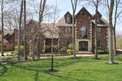 Tipp City Single Family Home For Sale: 7650 Whispering Oaks Trail