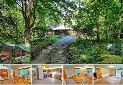 Yellow Springs Vlg Single Family Home For Sale: 1360 Rice Road