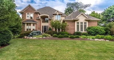 Dayton Single Family Home For Sale: 10178 Park Edge Drive