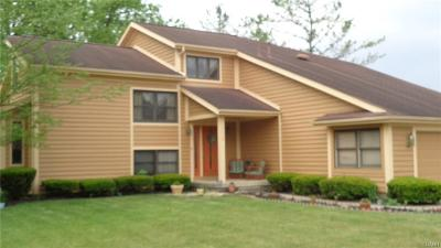 Springfield Single Family Home For Sale: 1119 Ryan Road