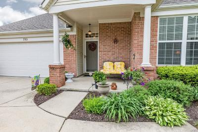 Centerville Single Family Home Active/Pending: 7110 Brookmeadow Drive