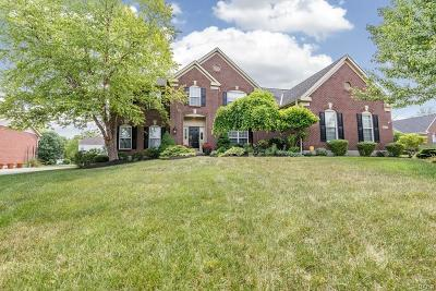Centerville Single Family Home For Sale: 9753 Olde Georgetown