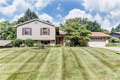 Centerville Single Family Home For Sale: 6141 Park Ridge Drive