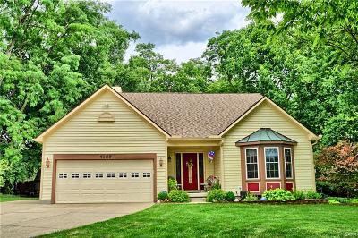 Beavercreek Single Family Home For Sale: 4159 Ranch Drive