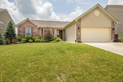 Tipp City Single Family Home Active/Pending: 4221 Bergamot Drive