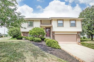 Vandalia Single Family Home For Sale: 385 Alkaline Springs Road
