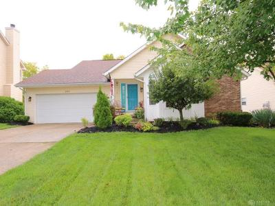 Middletown Single Family Home For Sale: 201 Jodee Drive