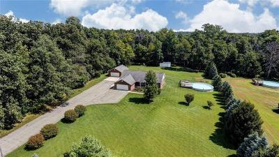 Highland County Single Family Home For Sale: 9832 Mad River Road