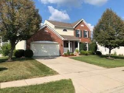 Englewood Single Family Home For Sale: 203 Sagebrush Drive