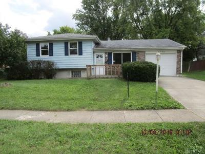 Englewood Single Family Home For Sale: 4780 Old Salem Road