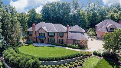 Vandalia Single Family Home For Sale: 4520 Hidden Hollow Trail