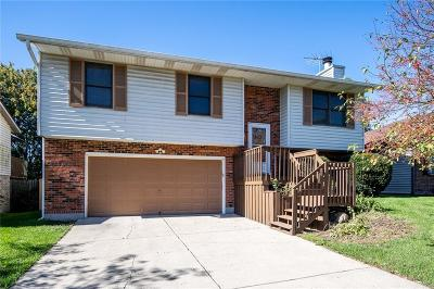 Middletown Single Family Home For Sale: 2652 Halifax Drive